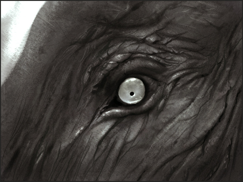 Angry Elephant Images